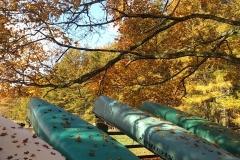 秋の源流コース🍂_180703_0026
