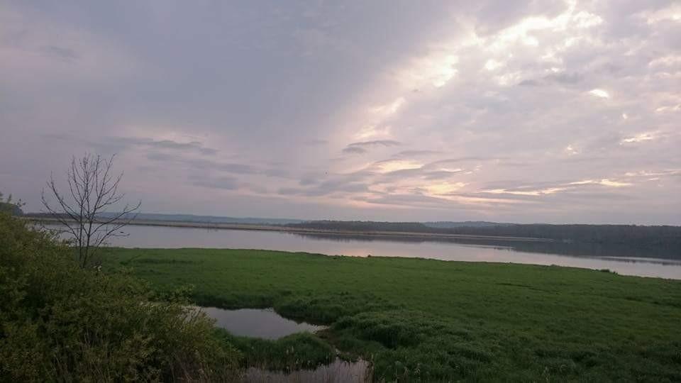 湿原1日コース*岩保木水門_180703_0005