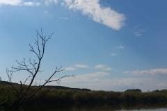 湿原1日コース*岩保木水門_180703_0002