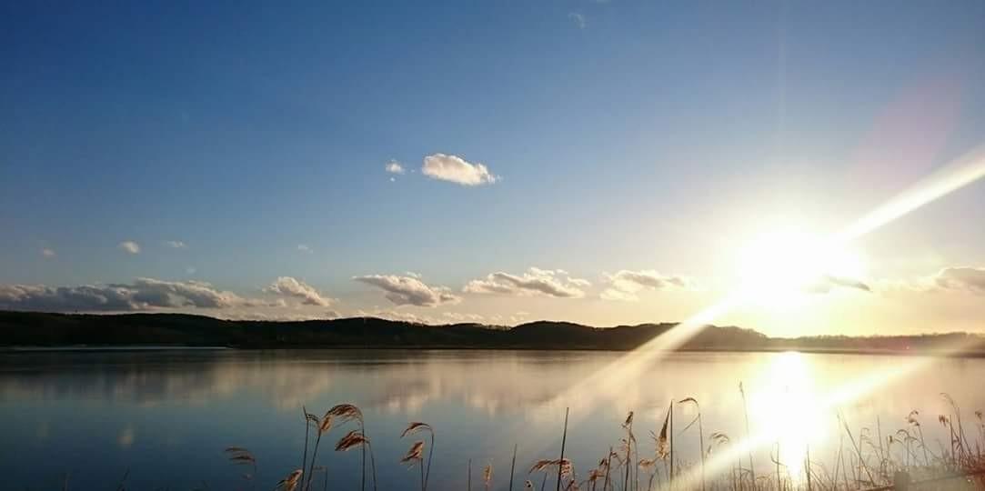 湿原半日コース🌟_180703_0001