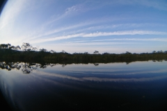 湿原半日コース🌟_180703_0011